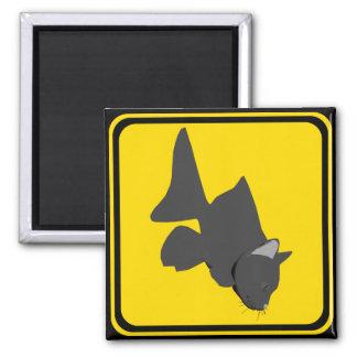 Warning: Catfish Xing! Square Magnet