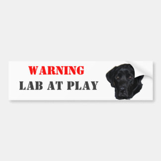 WARNING, Lab At Play Bumper Sticker
