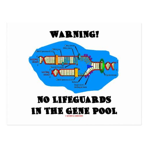 Warning! No Lifeguards In The Gene Pool Postcard
