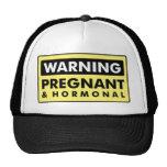 Warning: Pregnant & Hormonal