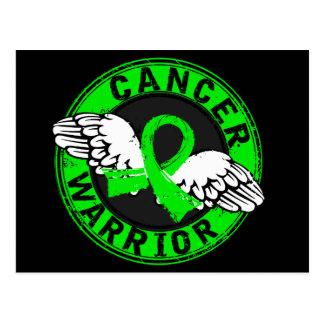 Warrior 14C Non-Hodgkin's Lymphoma Postcard