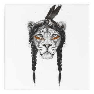 Warrior lion acrylic print