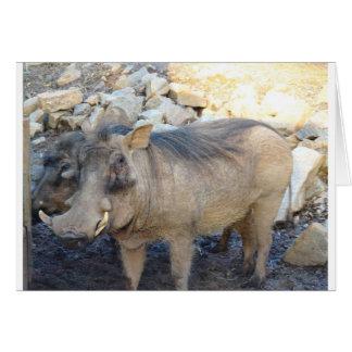 Wart Hog Greeting Card