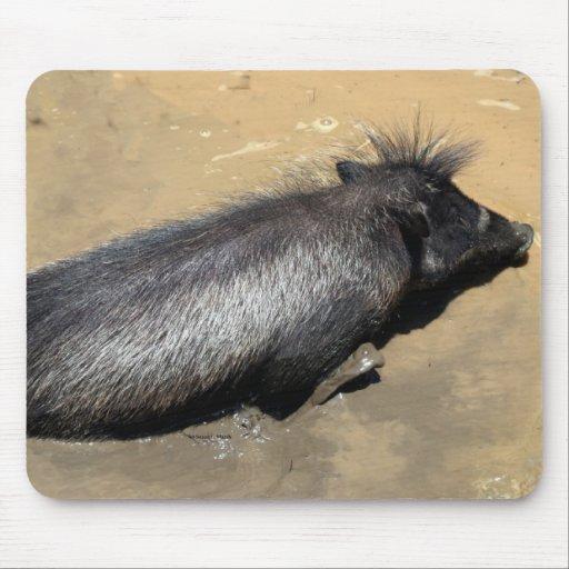 Warthog in mud mousepads
