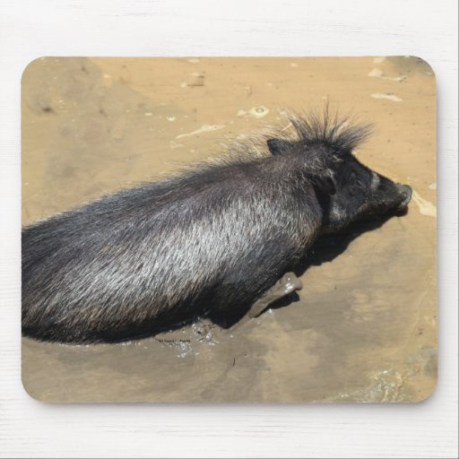 Warthog in mud mouse pad