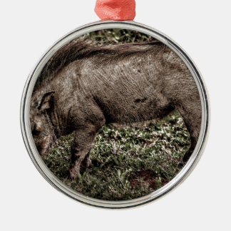 Warthog. Silver-Colored Round Decoration
