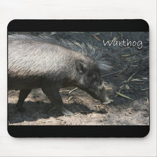 Warthog walking by palmetto mouse pad