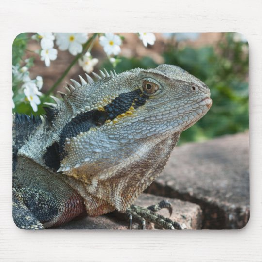 Wary Eastern Water Dragon Lizard Mouse Mat