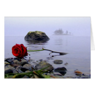 Washed Ashore Red Rose Greeting Card