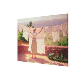 Washing in the Sun Canvas Print