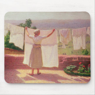 Washing in the Sun Mouse Mat