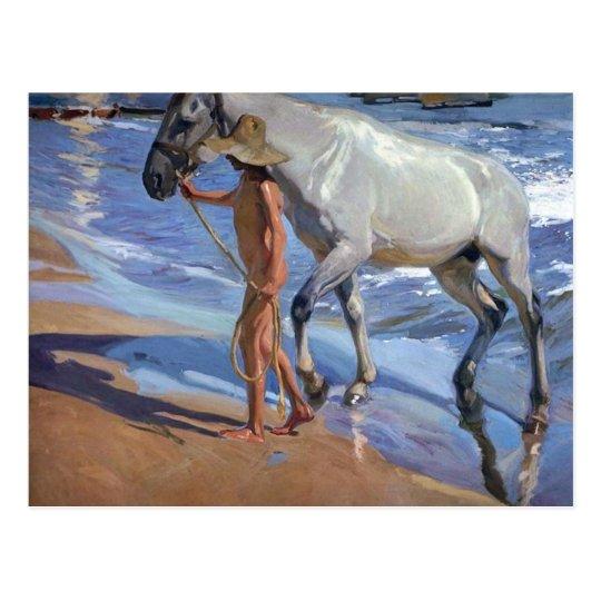 Washing the Horse Postcard