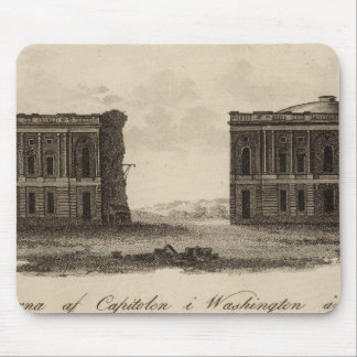 Washington and District of Columbia Mouse Mat