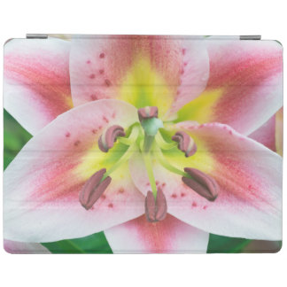 Washington, Bellevue, Lily iPad Cover