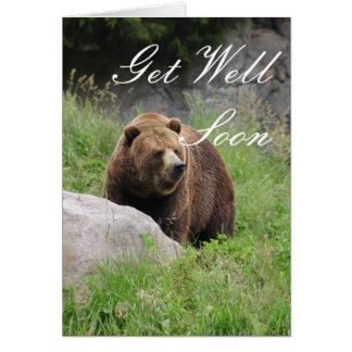 Washington Brown Bear - Get Well Card