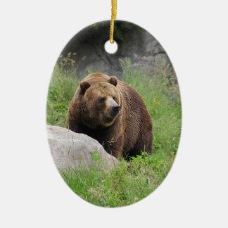 Washington Brown Bear - Ornament