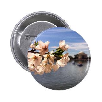 Washington, D.C. Cherry Blossoms button