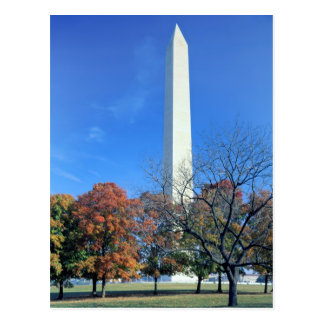 WASHINGTON, D.C. USA. Washington Monument rises Postcard