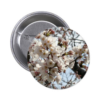 Washington DC Cherry Blossom Buttons