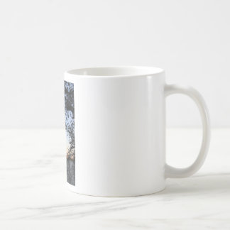 Washington DC Cherry Blossom Coffee Mugs