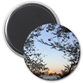 Washington DC Cherry Blossom Fridge Magnets