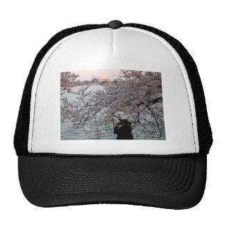 Washington DC Cherry Blossom Hats