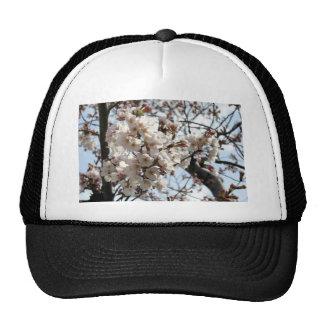 Washington DC Cherry Blossom Trucker Hat