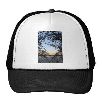 Washington DC Cherry Blossom Trucker Hats