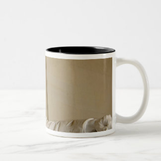 Washington, DC, Lincoln Memorial Two-Tone Coffee Mug