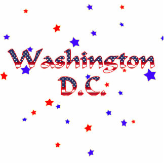 Washington DC Patriotic Stars Photo Sculpture Decoration
