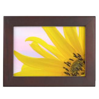 Washington. Detail of sunflower blossom 1 Keepsake Box