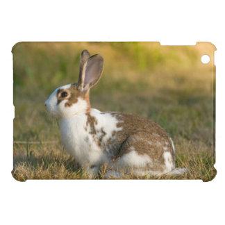 Washington, Discovery Park. Adult Rabbit Case For The iPad Mini