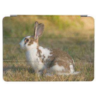 Washington, Discovery Park. Adult Rabbit iPad Air Cover