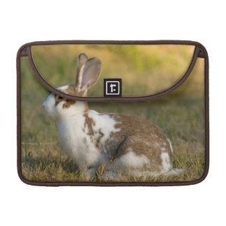 Washington, Discovery Park. Adult Rabbit Sleeve For MacBooks