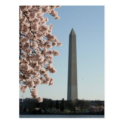 Washington Monument Post Card