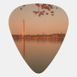 Washington Monument Sakura at sunset. Plectrum