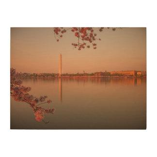 Washington Monument Sakura at sunset. Wood Print