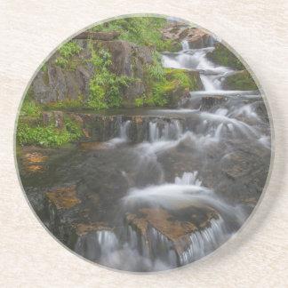 Washington, Mount Rainier National Park 2 Coaster