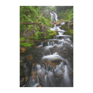 Washington, Mount Rainier National Park 2 Gallery Wrapped Canvas
