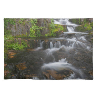 Washington, Mount Rainier National Park 2 Placemat