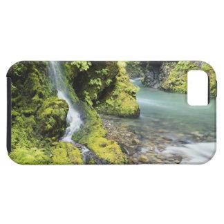 Washington, Olympic National Park, Seasonal Case For The iPhone 5