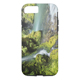 Washington, Olympic National Park, Seasonal iPhone 8/7 Case