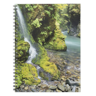 Washington, Olympic National Park, Seasonal Notebook