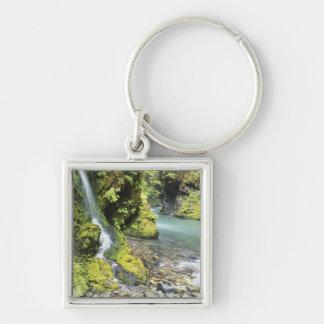 Washington, Olympic National Park, Seasonal Silver-Colored Square Key Ring