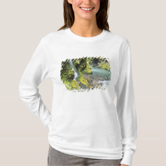 Washington, Olympic National Park, Seasonal T-Shirt