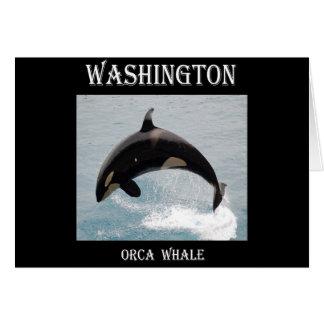 Washington Orca Whale Greeting Cards