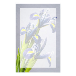 Washington, Redmond, Purple Irises Stationery