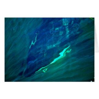 Washington Salish Sea Orca Whale Greeting Card