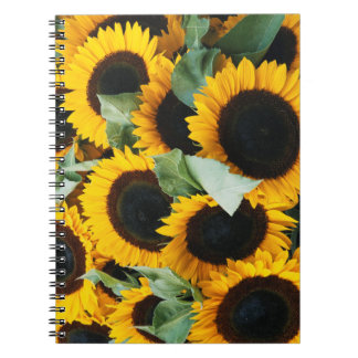 Washington, Seattle, Sunflower for sale pike Notebooks