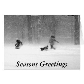 Washington Square II Christmas Card